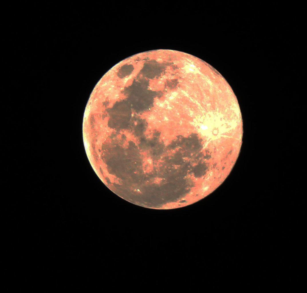 bad moon s.jpg