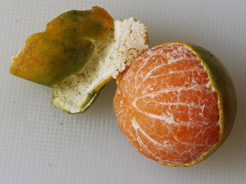 green orange s.jpg