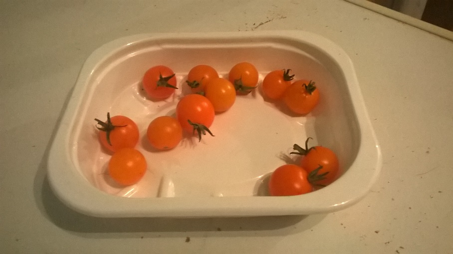 Home grown cherry tomatoes.jpg