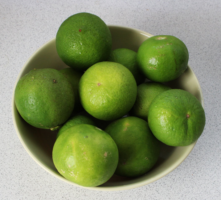 limes-2 s.jpg