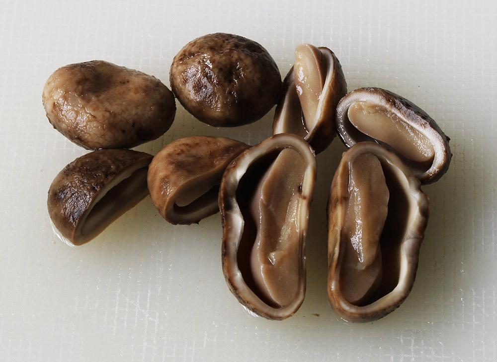 mushroom ns cut s.jpg