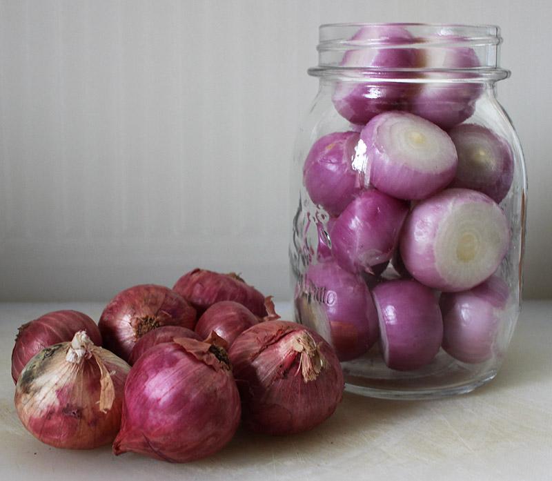 pickling onions s.jpg
