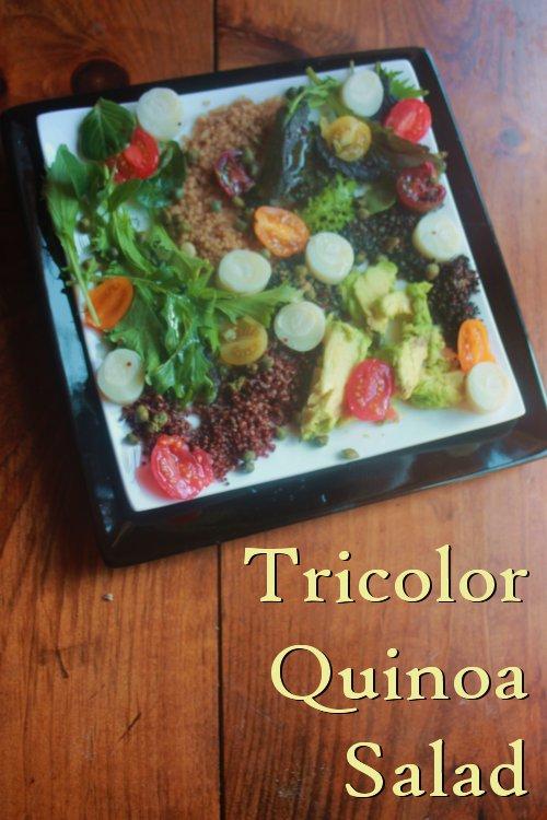 quinoa-salad-logo.jpg