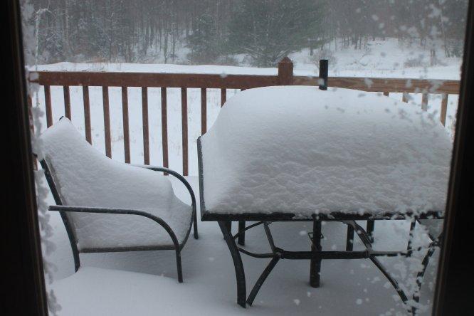 snow dec 2.jpg