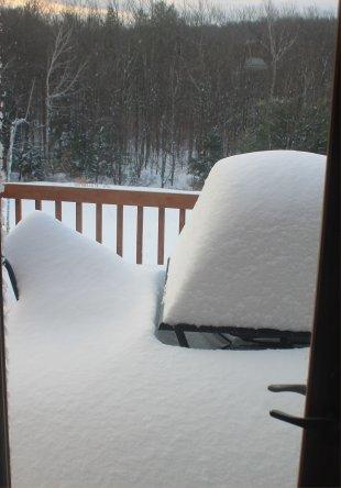 snow dec 3.jpg
