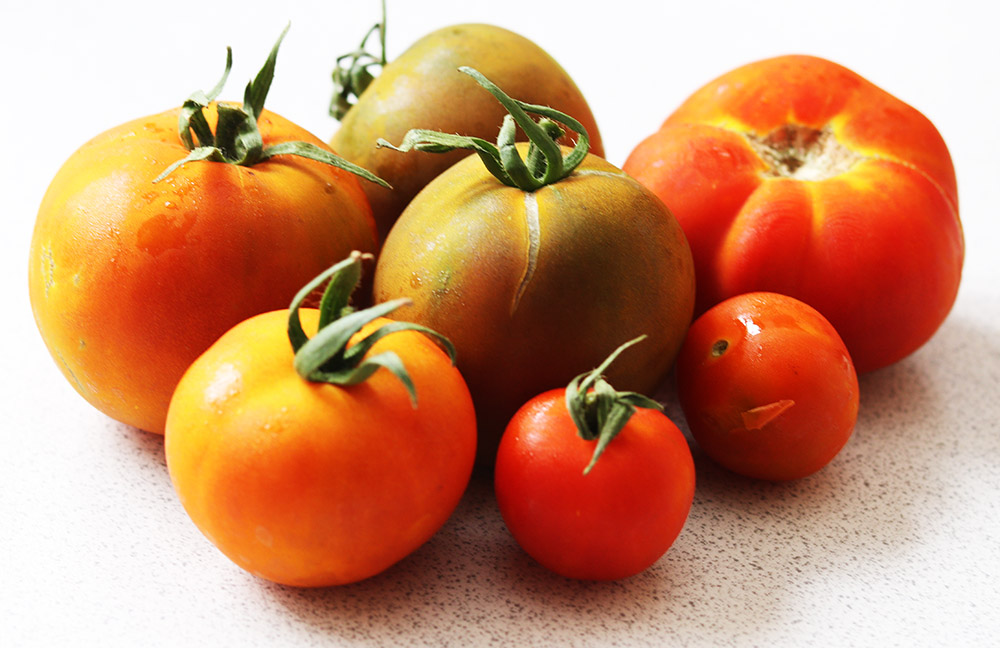 tomatoes s.jpg