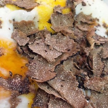 Fried eggs and black truffle carpaccio