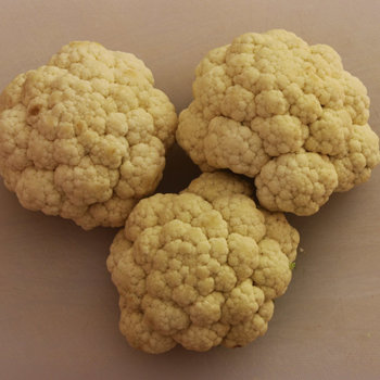 Small cauliflowers.