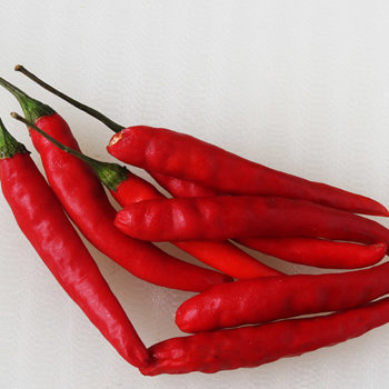 Fresh red Thai hot chillies