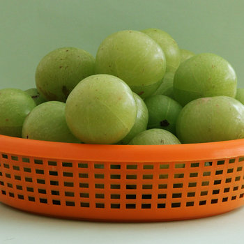 Indian gooseberry 2 s.jpg