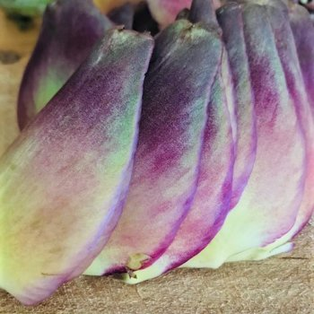 Artichoke Outer Leaves.jpg